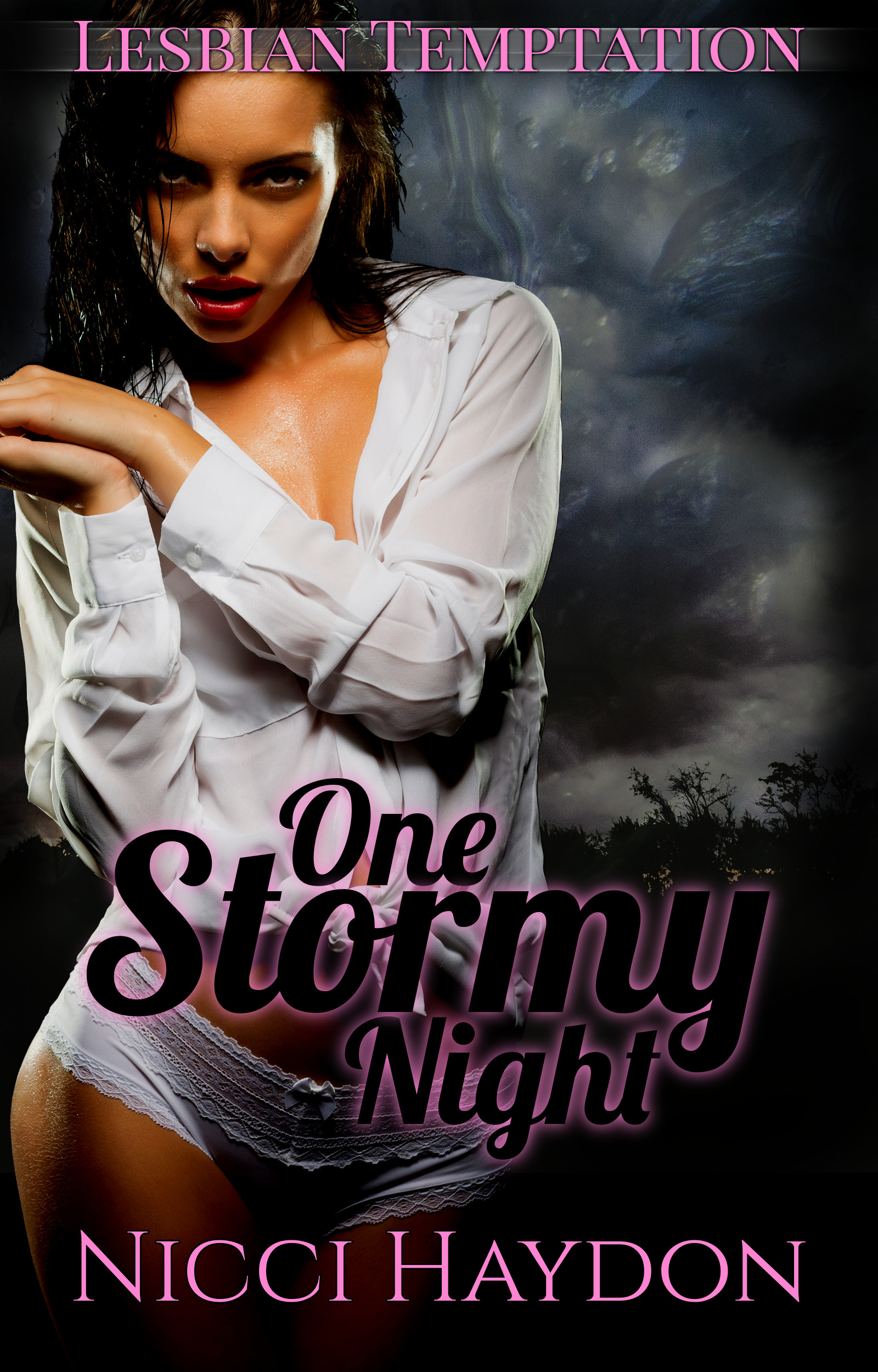 One Stormy Night - Lesbian Temptation Book 2